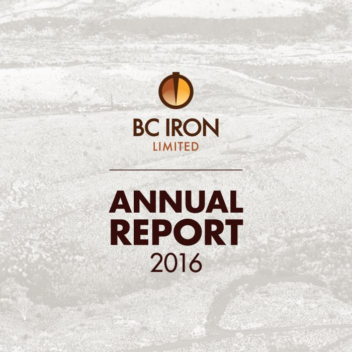 BC Iron Annual Report