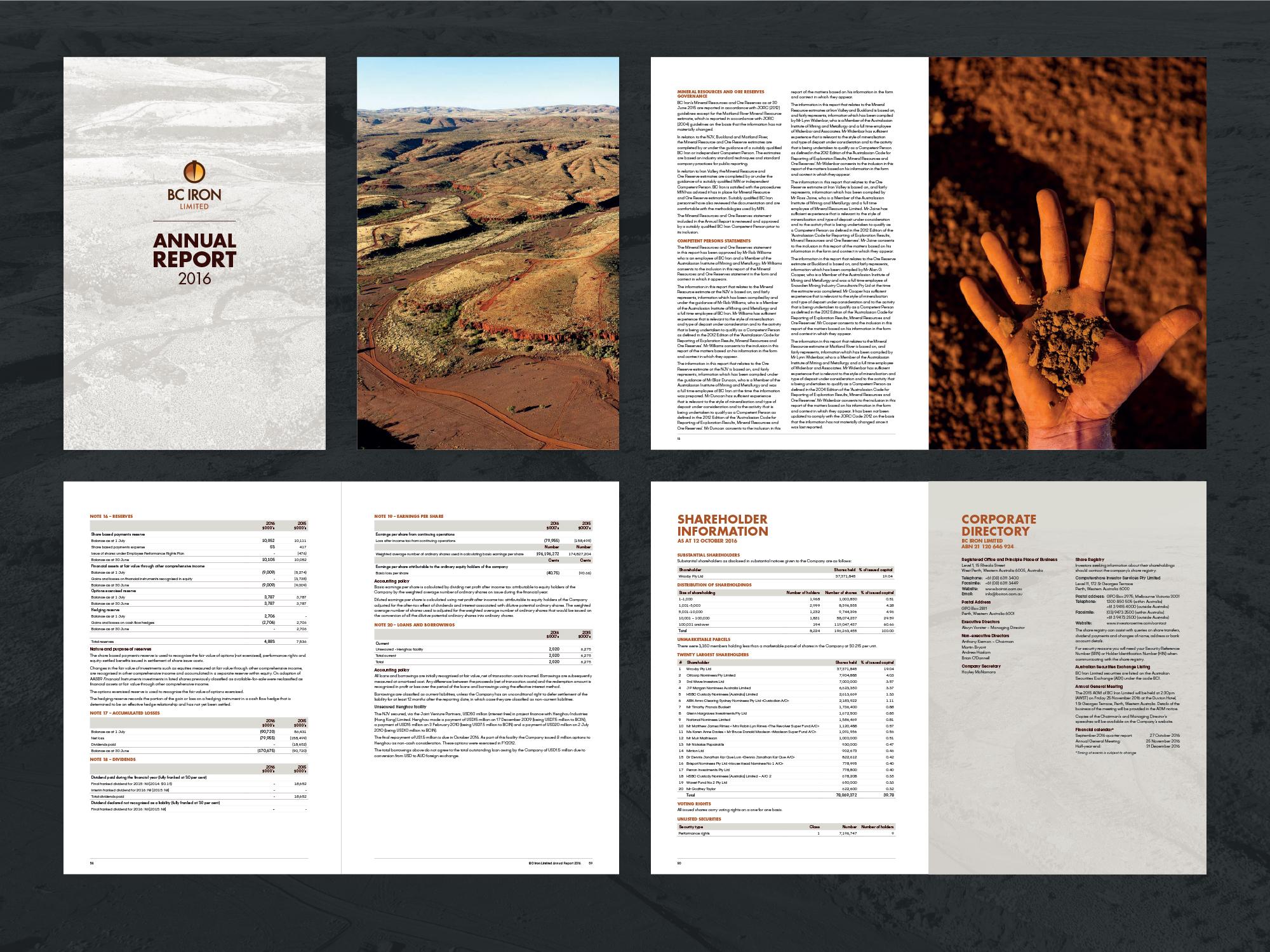 BC Iron Annual Report